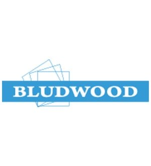 Top1.com.ua Bludwood Logo